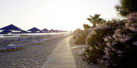 Stranden ved Hotel Aquila Rithymna Beach på Kreta, Grækenland