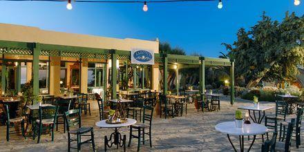 Café på Hotel Aquila Rithymna Beach på Kreta, Grækenland