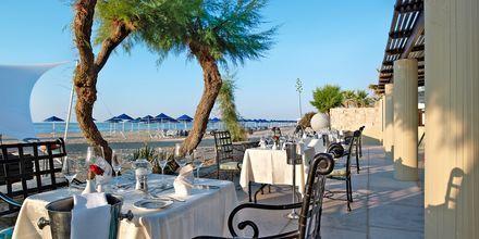 A la carte restaurant på Familie-værelse på Hotel Aquila Rithymna Beach på Kreta, Grækenland