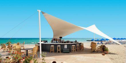 Strandbar på Hotel Aquila Rithymna Beach på Kreta, Grækenland
