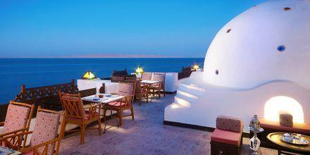 Bar på Hotel Arabella Azur Resort, Hurghada, Egypten.