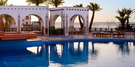 Pool på Hotel Arabella Azur Resort, Hurghada, Egypten.