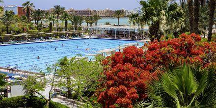 Poolområde på Arabia Azur Resort i Hurghada, Egypten
