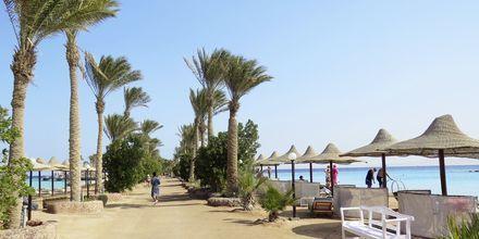 Molen på Arabia Azur Resort i Hurghada, Egypten