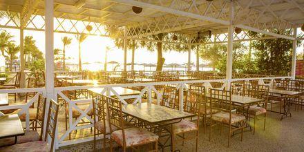 Restaurant ved poolen på Arabia Azur Resort i Hurghada, Egypten