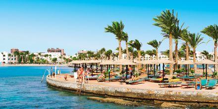 Solterrasse på Arabia Azur Resort i Hurghada, Egypten