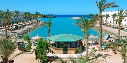 Hotelstranden ved Arabia Azur Resort i Hurghada, Egypten