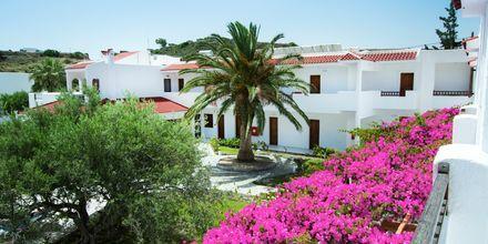 Hotel Astron i Karpathos by, Grækenland.