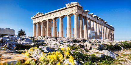 Det berømte tempel i Parhtenon i Athen. Grækenland.