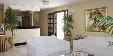 Reception på Hotel Athena på Samos, Grækenland.