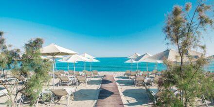 Stranden ved Atlantis Beach i Rethymnon på Kreta, Grækenland