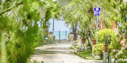 Vejen ned til stranden ved Baan Khaolak Beach Resort