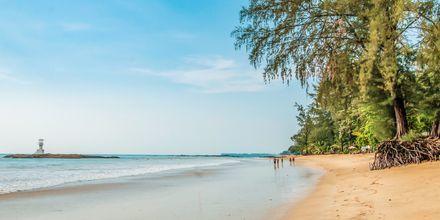 Baan Khaolak Beach Resort