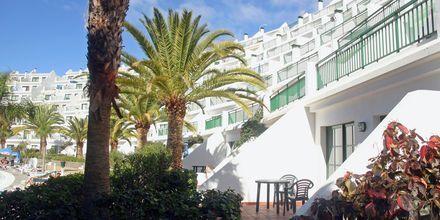 Hotel Babalu i Puerto Rico, Gran Canaria