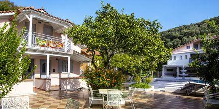 Haven ved Hotel Bacoli i Parga, Grækenland.