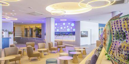 Bar på Hotel Bahia Principe Coral Playa på Mallorca, Spanien