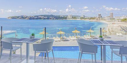 Hotel Bahia Principe Coral Playa på Mallorca, Spanien
