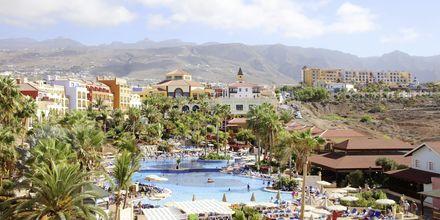 Poolområdet på Bahia Principe Sunlight Costa Adeje, Tenerife