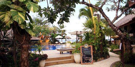 Dovne dage på Bali Reef Resort i Tanjung, Benoa, Bali.