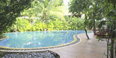Pool på Bamboo Village Resort, Vietnam.
