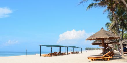 Stranden ved Bamboo Village Resort, Vietnam.