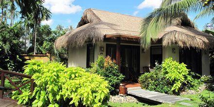 Bamboo Village Resort, Vietnam.