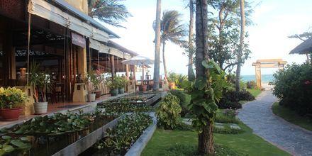 Restaurant Strawy på Bamboo Village Resort, Vietnam.