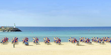 Strand ved Hotel Barcelo Castillo Beach Resort på Fuerteventura, De Kanariske Øer, Spanien.