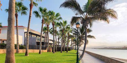 Hotel Barcelo Castillo Beach Resort på Fuerteventura, De Kanariske Øer, Spanien.