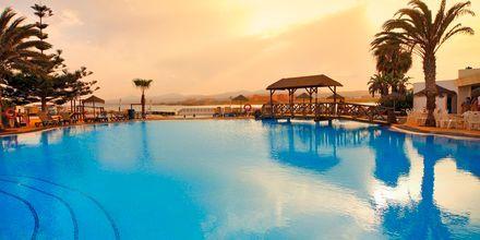 Poolen på Hotel Barcelo Castillo Beach Resort på Fuerteventura, De Kanariske Øer, Spanien.