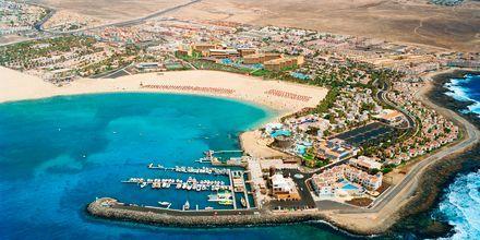 Caleta de Fuste på Fuerteventura, De Kanariske Øer, Spanien.