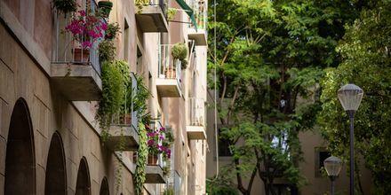 Frodige parker og farverige balkoner.