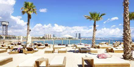 Slap af på stranden i bydelen Barceloneta.