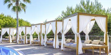 Poolområde på Hotel Be Live Collection Palace de Muro på Mallorca.