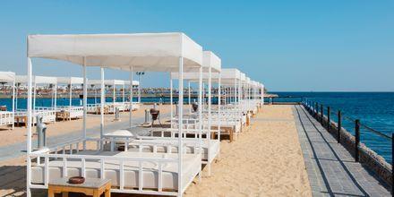Hotellets private strandområde på Hotel Beach Albatros Resort i Hurghada, Egypten.