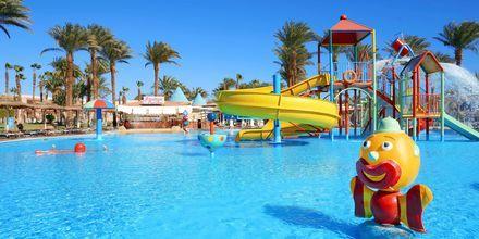 Børnepool på Hotel Beach Albatros Resort i Hurghada, Egypten