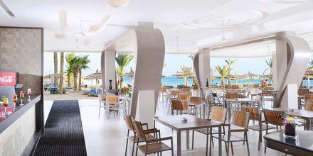 Shishabaren Red Sky Bar på Hotel Beach Albatros Resort i Hurghada, Egypten