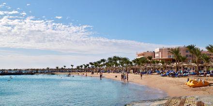 Stranden ved Hotel Beach Albatros Resort i Hurghada, Egypten.