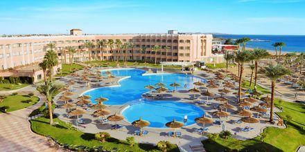 Poolområde på Hotel Beach Albatros Resort i Hurghada, Egypten