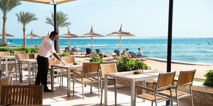 Nyd god mad med udsigt over havet på Hotel Beach Albatros Resort i Hurghada, Egypten.