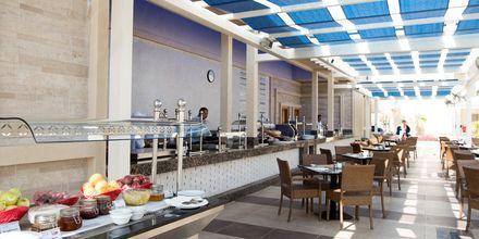 Poolbar kun for Apollos gæster på Hotel Beach Albatros Resort i Hurghada, Egypten.