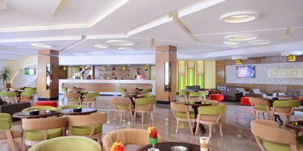 Cappuccino Bar på Hotel Beach Albatros Resort i Hurghada, Egypten