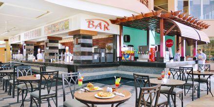 Bar på Hotel Beach Albatros Resort i Hurghada, Egypten