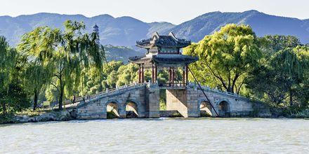 En majestætisk bro i parken, som tilhører Sommerpaladset.