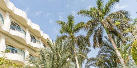 Hotel Bella Vista i Hurghada, Egypten
