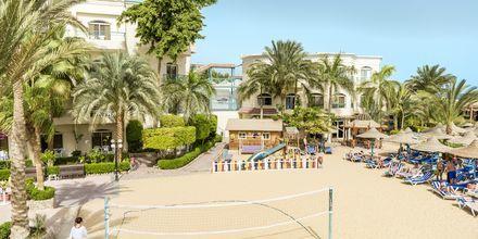 Beach Volley på hotel Bella Vista i Hurghada, Egypten
