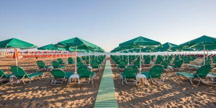 Stranden ved Hotel Bio i Rethymnon på Kreta, Grækenland