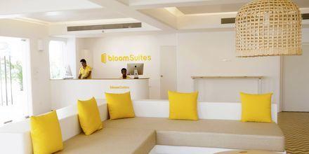 Bloom Suites