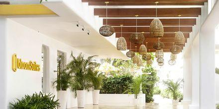 Bloom Suites i Det Nordlige Goa, Indien