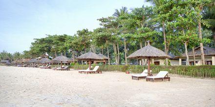 Stranden ved Hotel Blue Ocean Resort i Phan Thiet i Vietnam.